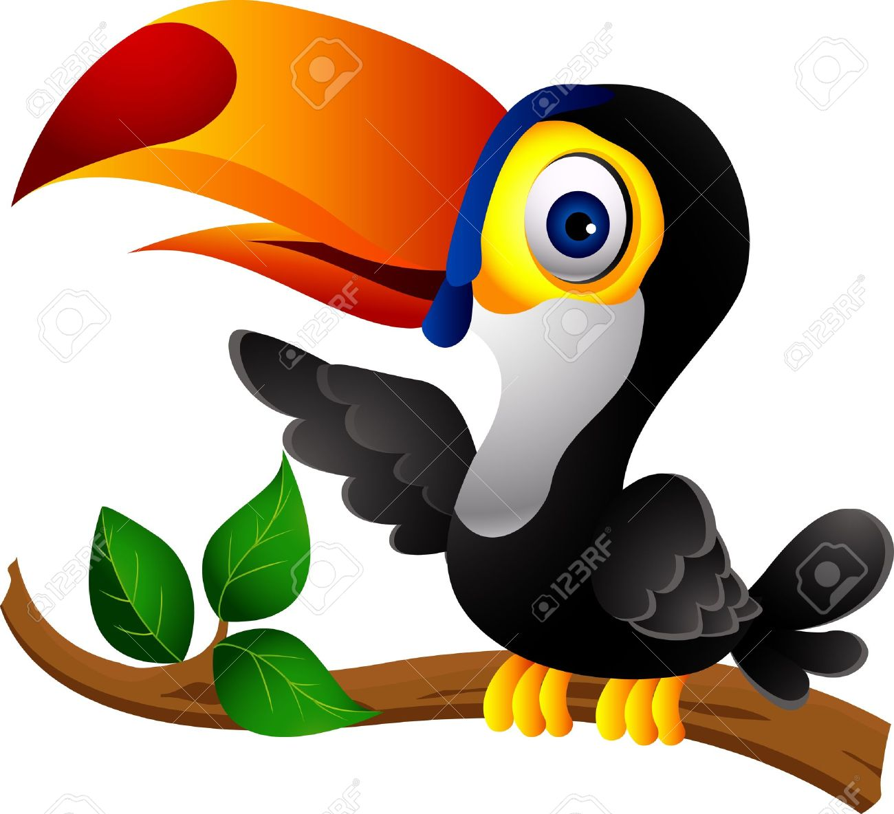 Drawing at getdrawings com. Toucan clipart