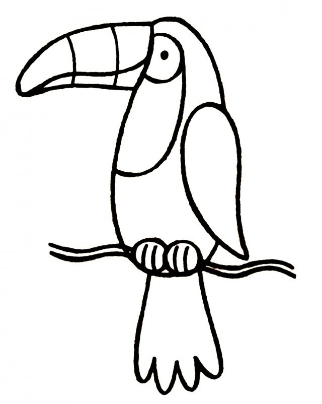 Black and white letters. Toucan clipart