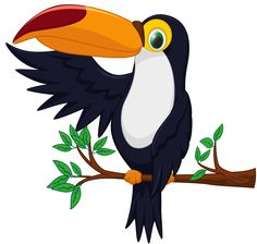 Toucan clipart. Cartoon png transparent image