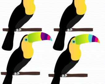 Etsy instant download scrapbook. Toucan clipart