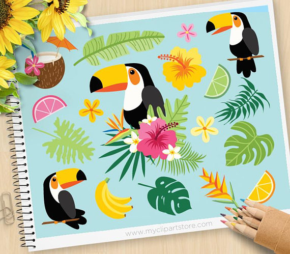 Toucan clipart. Tropical birds bird of