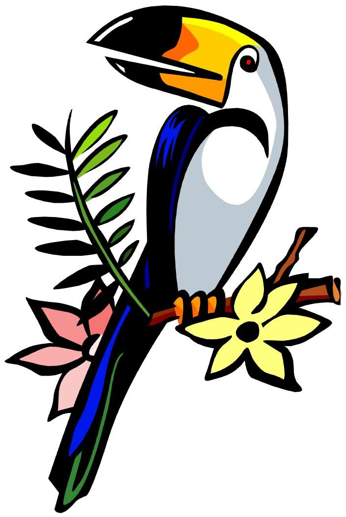 Toucan clipart. Best clipartion com birb