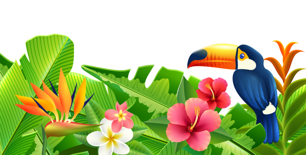 Summer png transparent peoplepng. Toucan clipart christmas