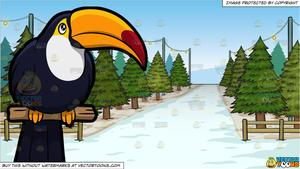 A and tree lot. Toucan clipart christmas
