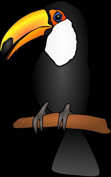 Imagen gratis en pixabay. Toucan clipart kawaii