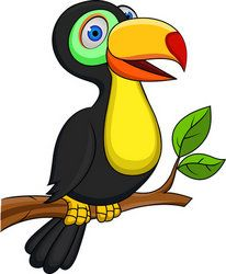Colorful bird coloring pages. Toucan clipart kid