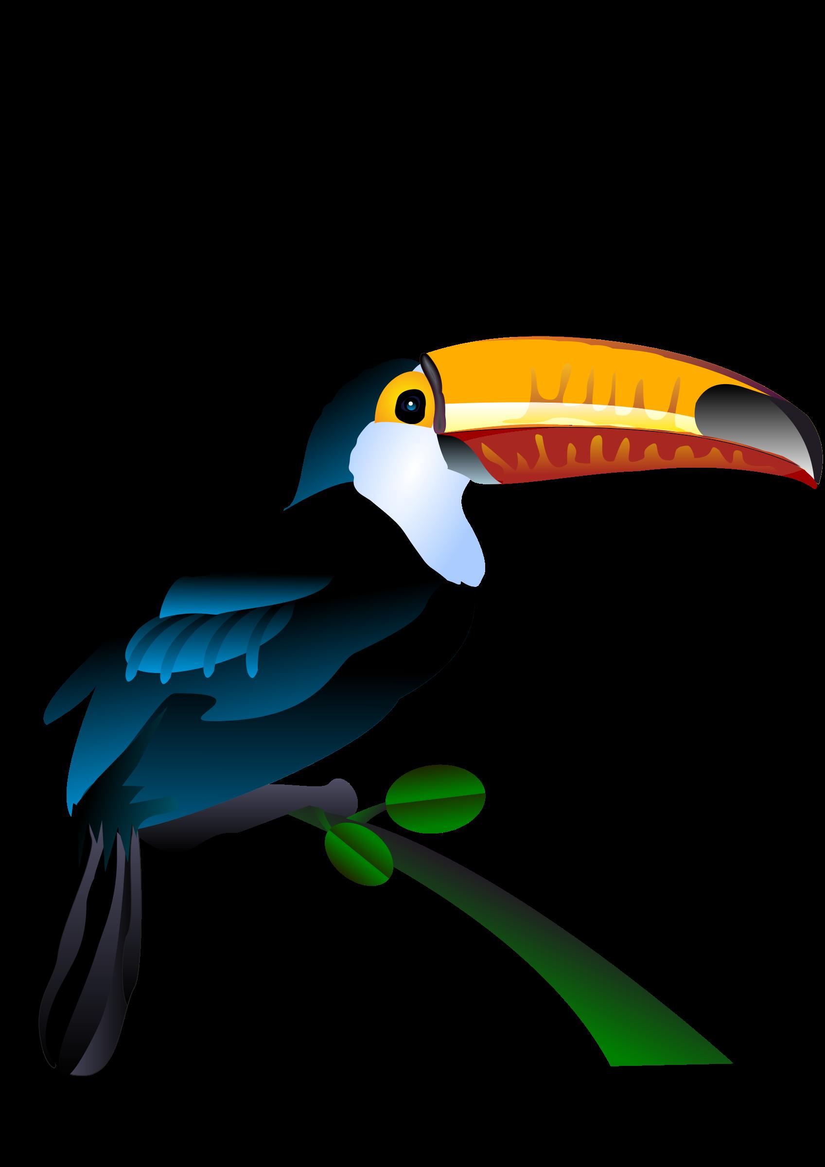 Toucan clipart kid. Cockatiel at getdrawings com