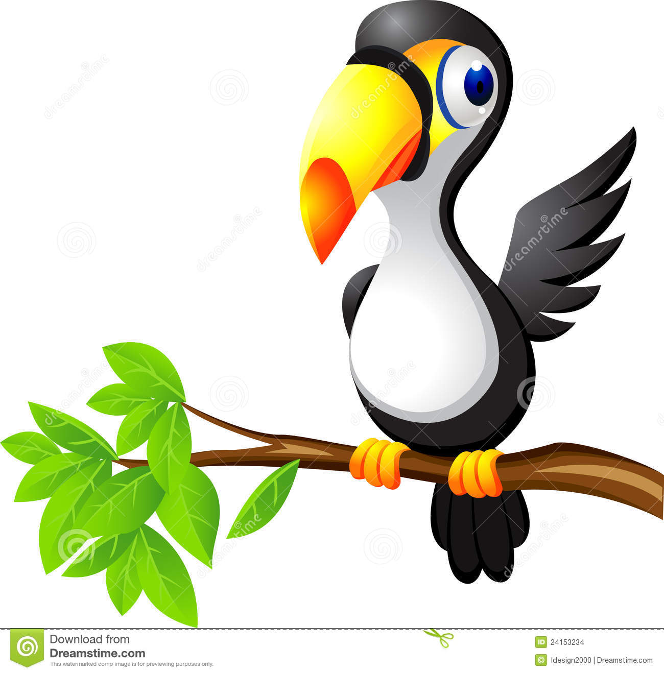 Collection of free download. Toucan clipart kid