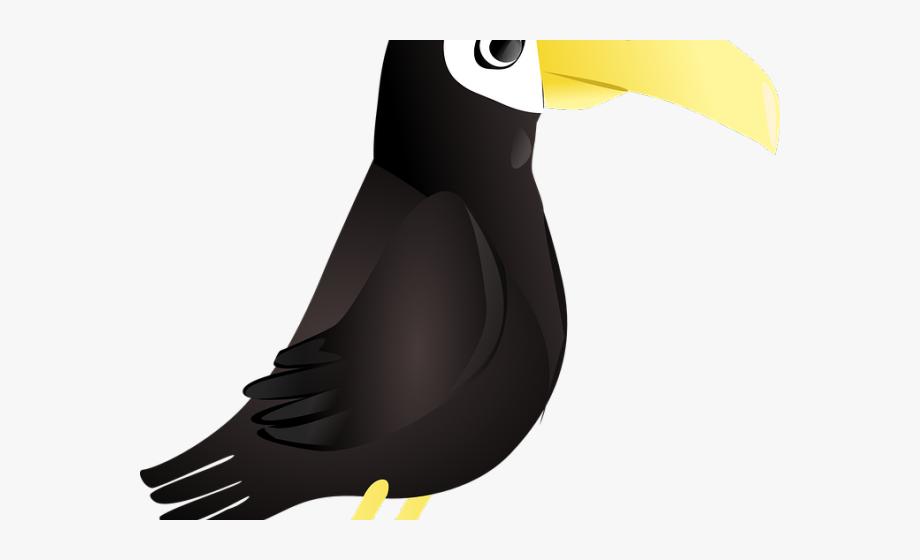 Toucan clipart rainforest brazilian. Monkey ad lie penguin