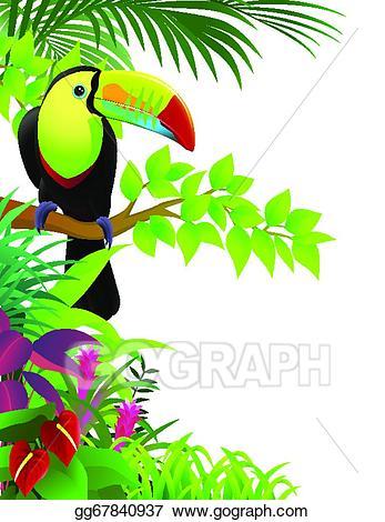 Toucan clipart tropical parrot. X free clip art