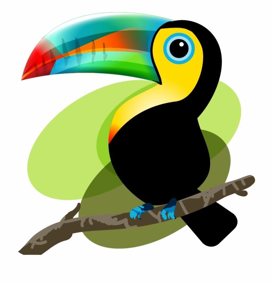 Quetzal pngtube . Toucan clipart tucan