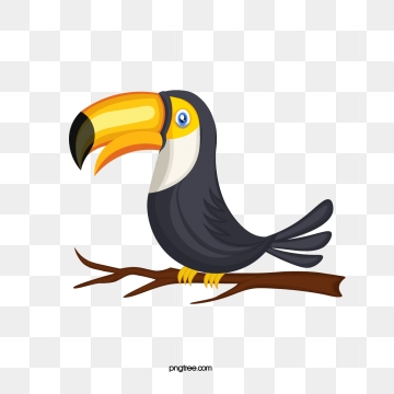 Toucan clipart vector. Png psd and with