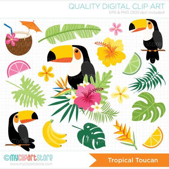 Tropical birds palm leaves. Toucan clipart vector