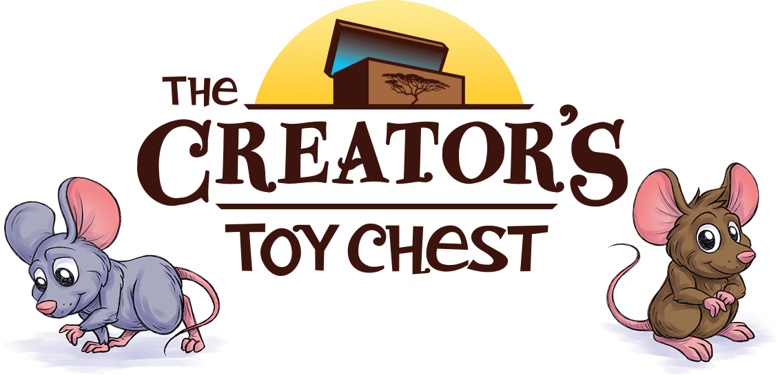 Toy toy chest