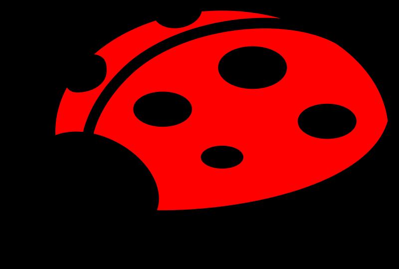 Trail clipart bug. Ladybug medium image png