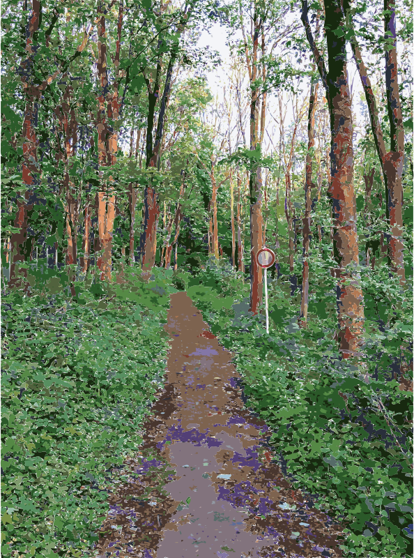 Lichtscheid again medium image. Trail clipart forest trail