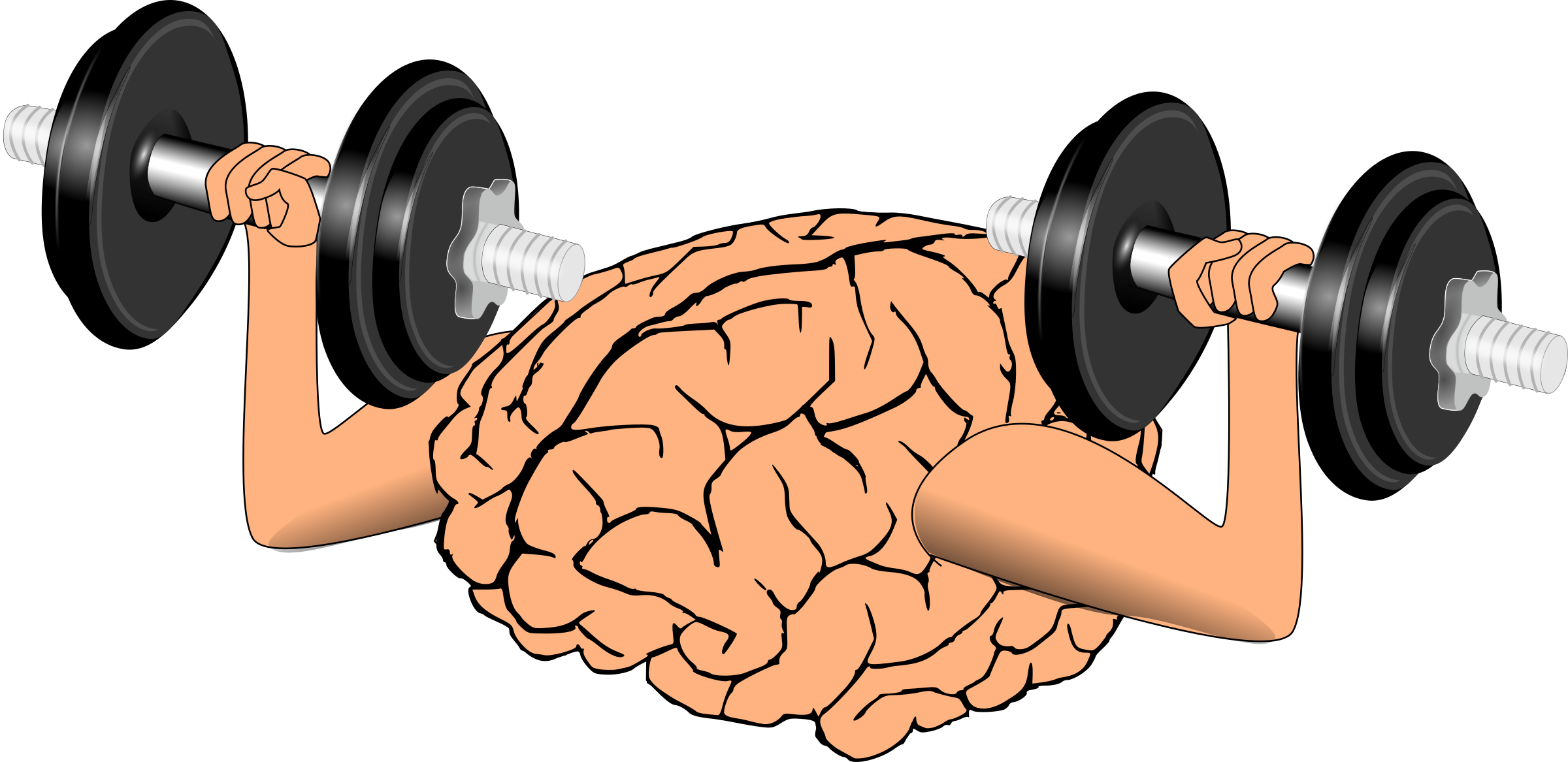 Brain training big image. Dumbbell clipart muscular force