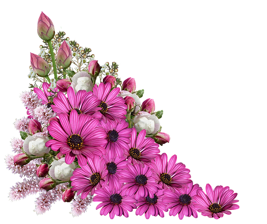 Tiny flowers images pluspng. Transparent flower png