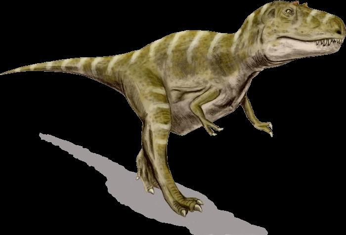 File gorgosaurus bw wikimedia. Transparent png images