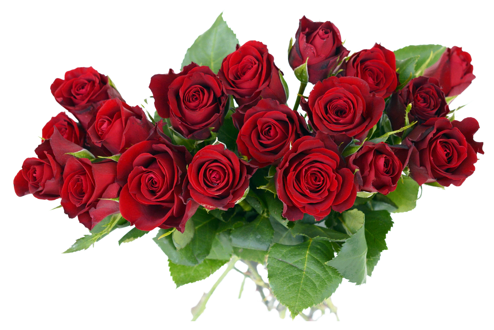 Rose bouquet image purepng. Flower bunch png