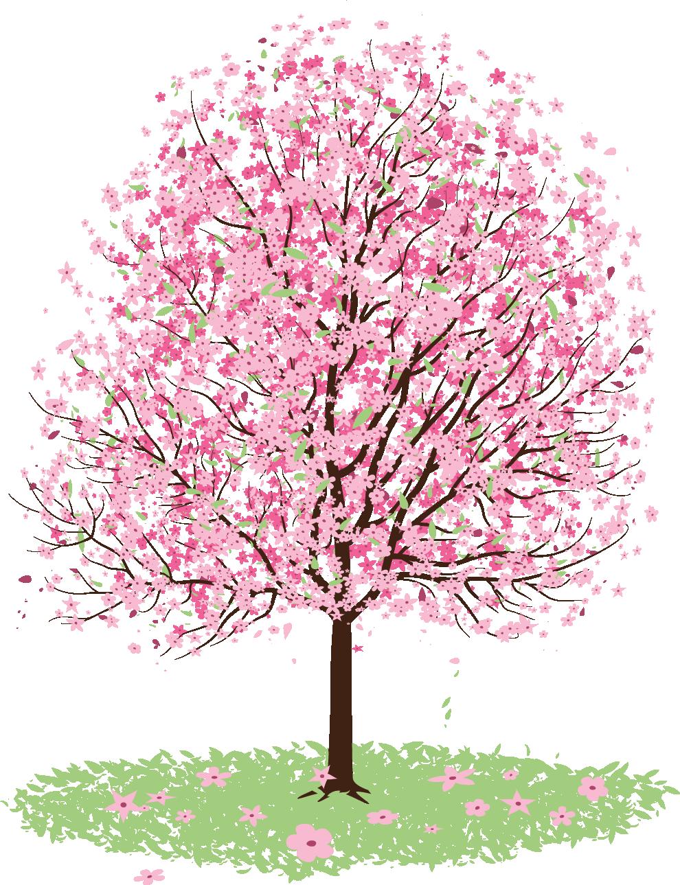 Tree clipart apple blossom. Cherry clip art sakura