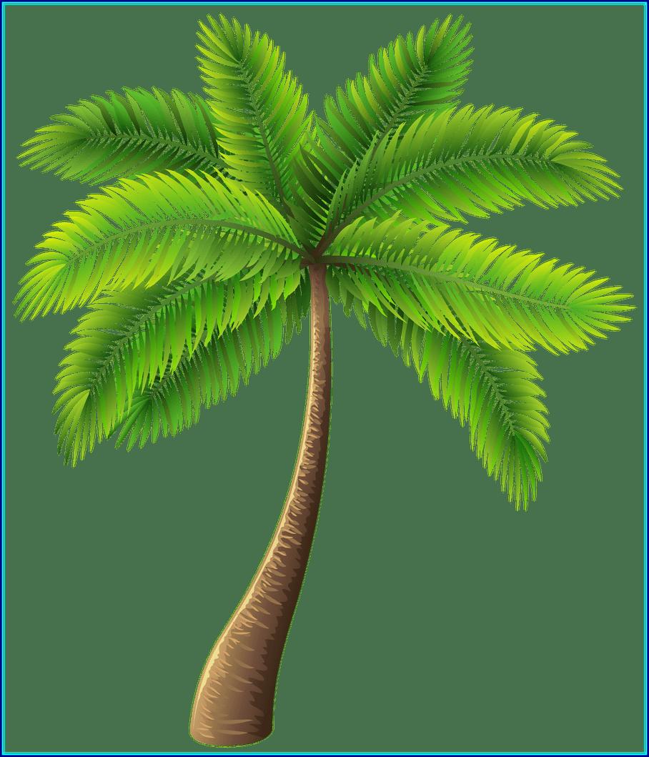 Tree clipart coconut. Astonishing palm clip art