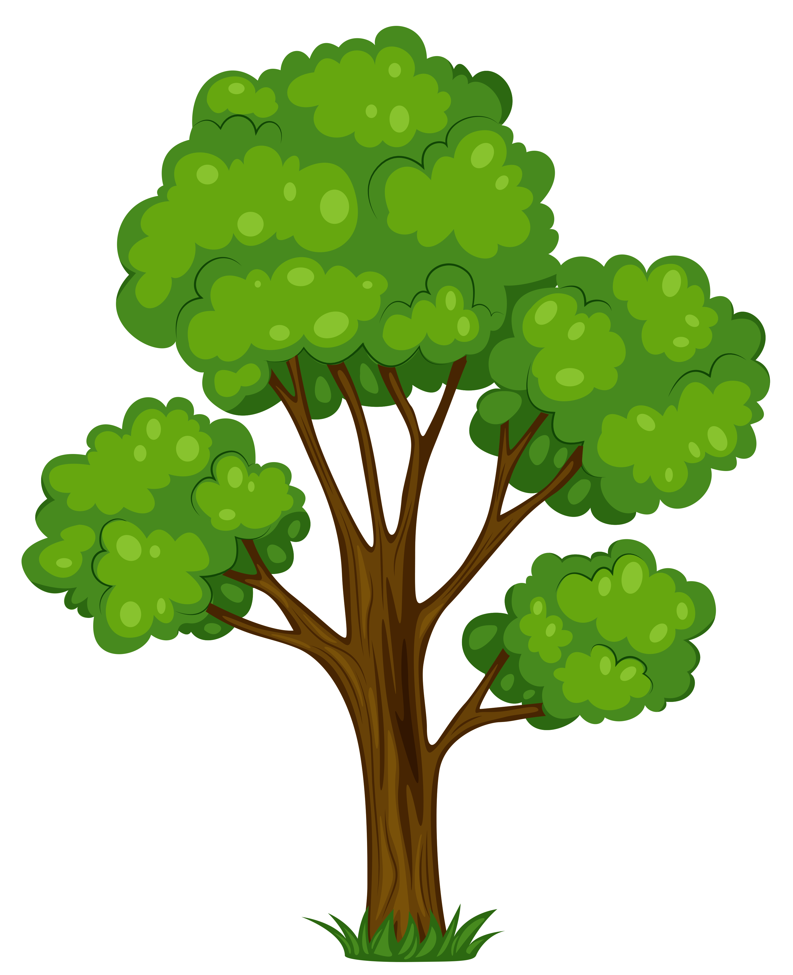 Group hd . Tree clipart green