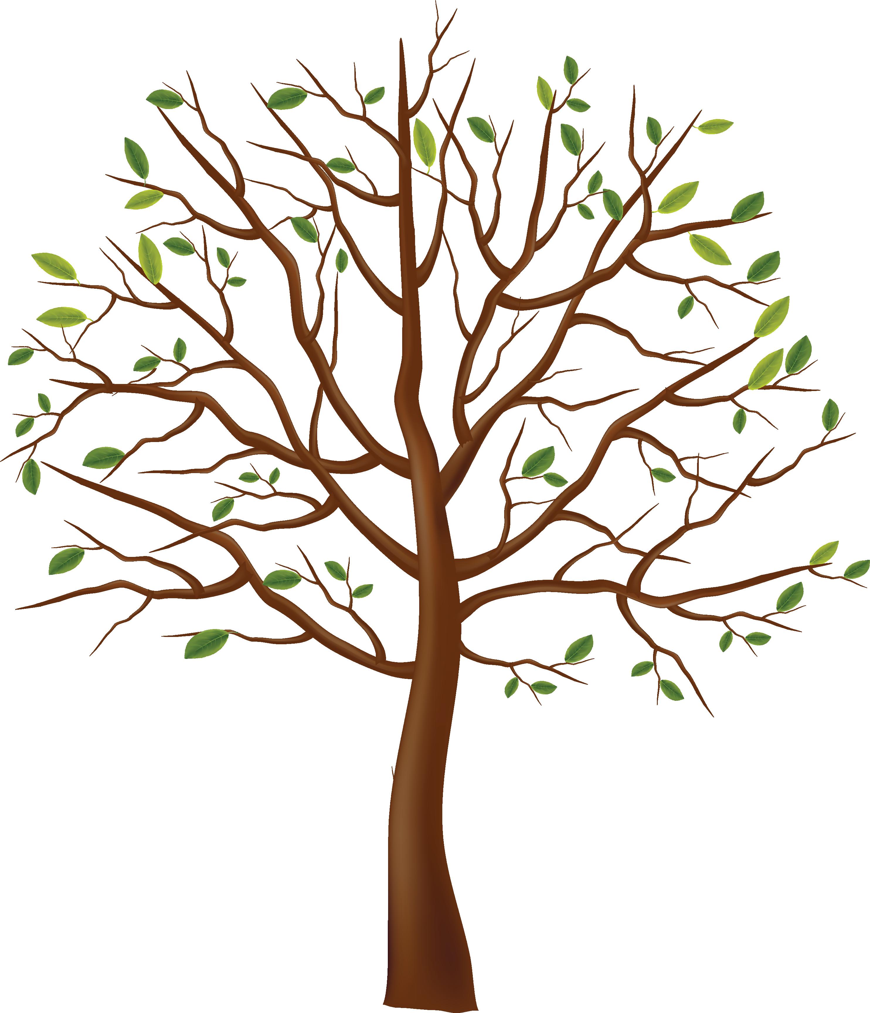 Tree clipart narra. Park free image