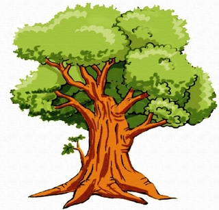 Tree clipart narra. Station