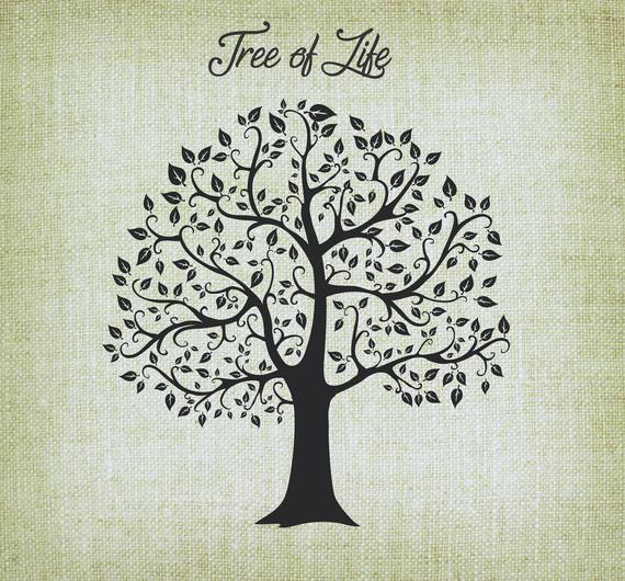 Tree clipart number. Of life svg vector