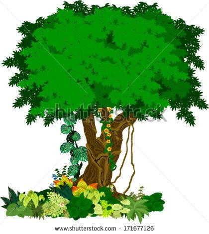 Tree clipart rainforest. Trees tropical summer