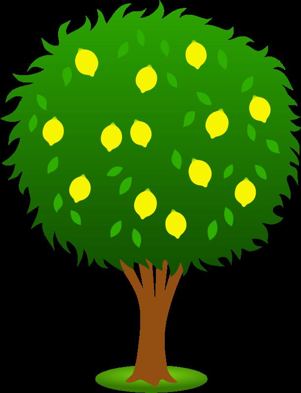 Tree clipart santol. Fruit panda free images