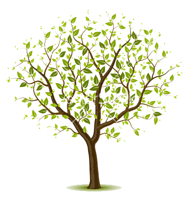Tree clipart vector. Spring wall designs in