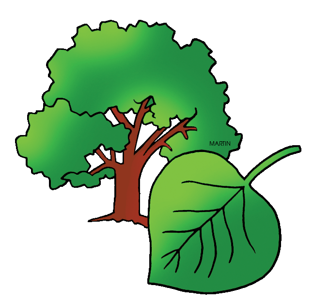 Tree clipart vegetable. United states clip art