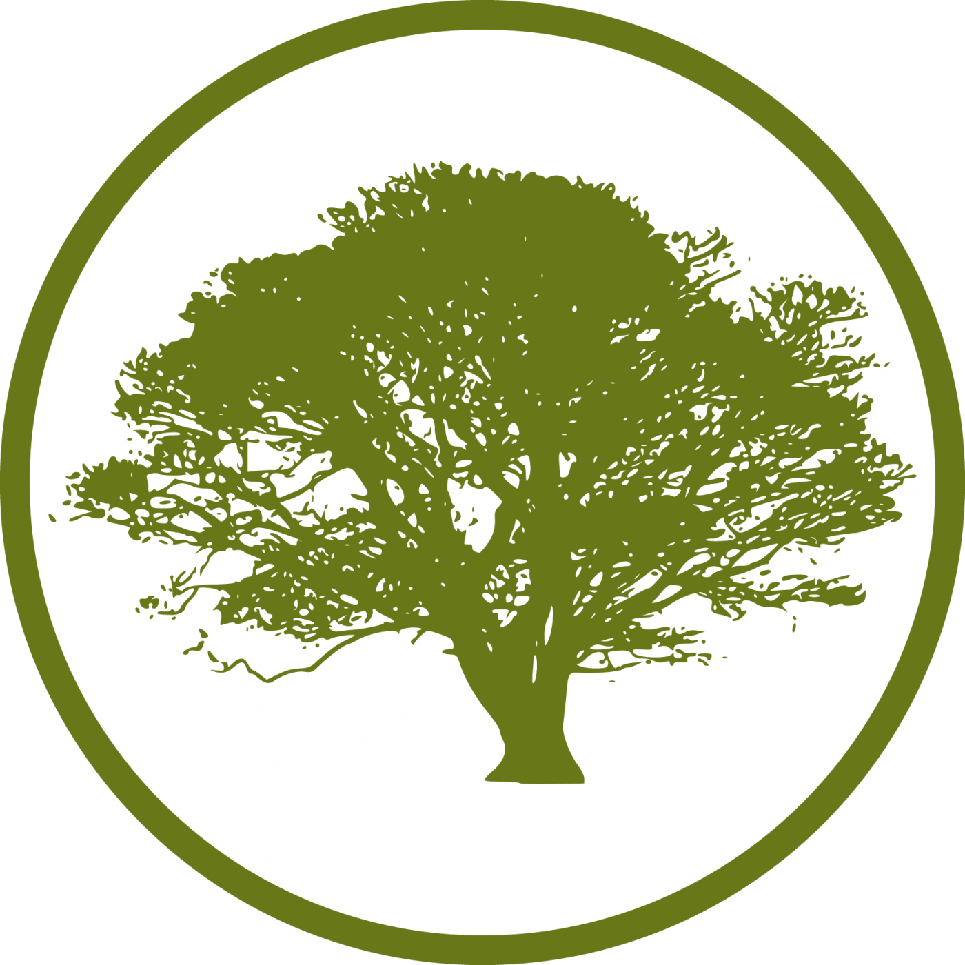 Tree icon png. Cropped martin forestry sawtelle