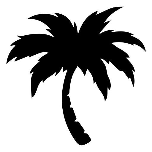 palm for free. Tree vector png