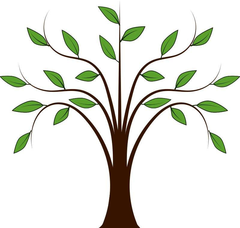 Tree vector png. Free whispy graphic available