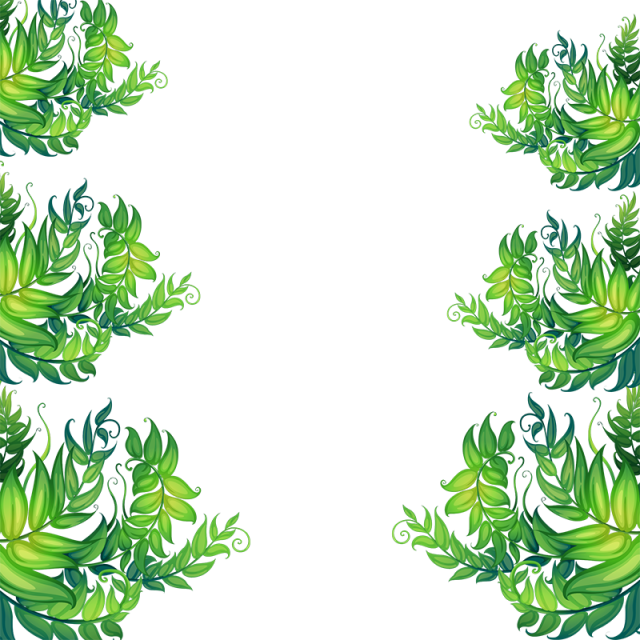 flowers for free. Tropical border png