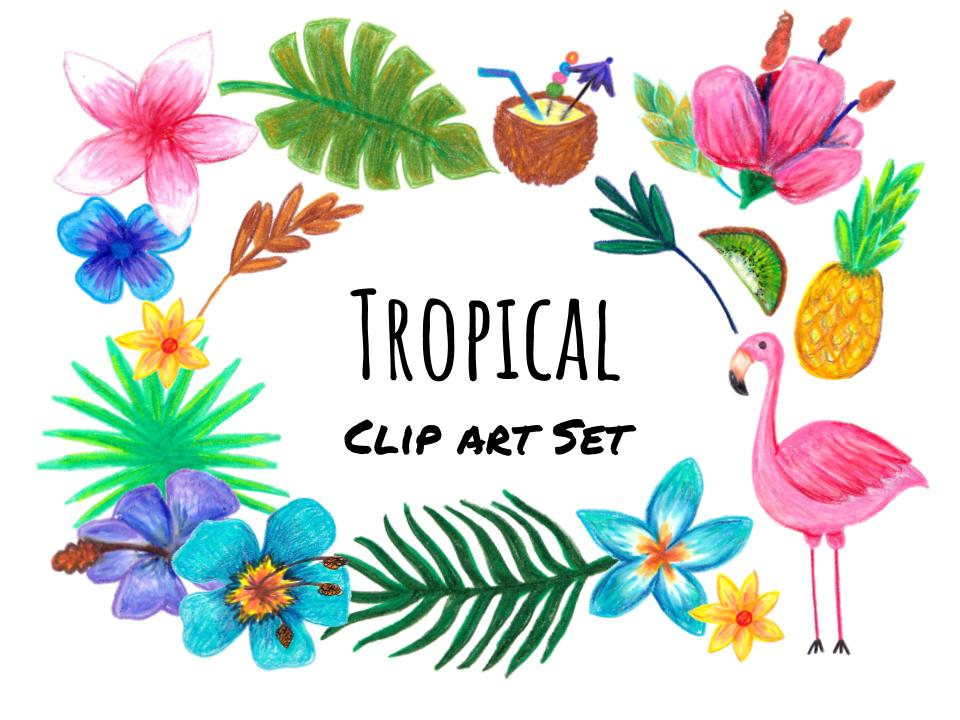 Hand drawn clip art. Tropical clipart