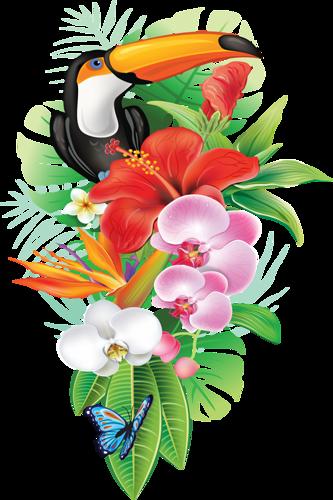 Www opendesktop org . Tropical flower png