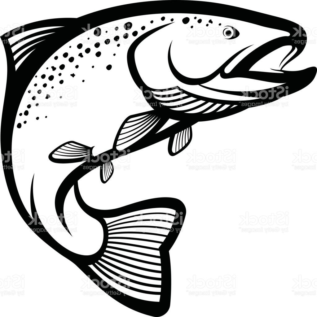Drawing at paintingvalley com. Trout clipart black and white
