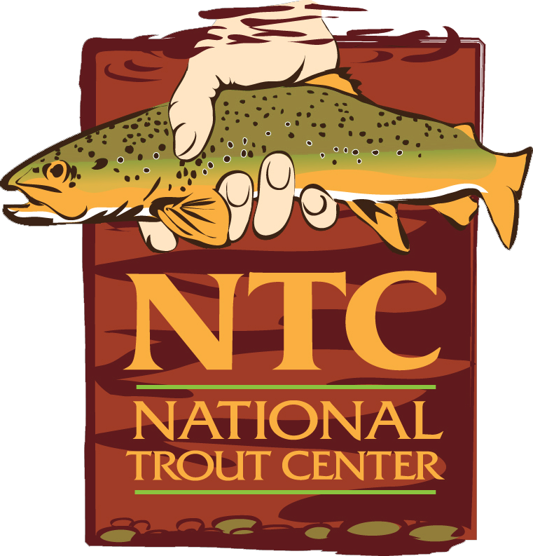 Art in nature skin. Trout clipart brook trout