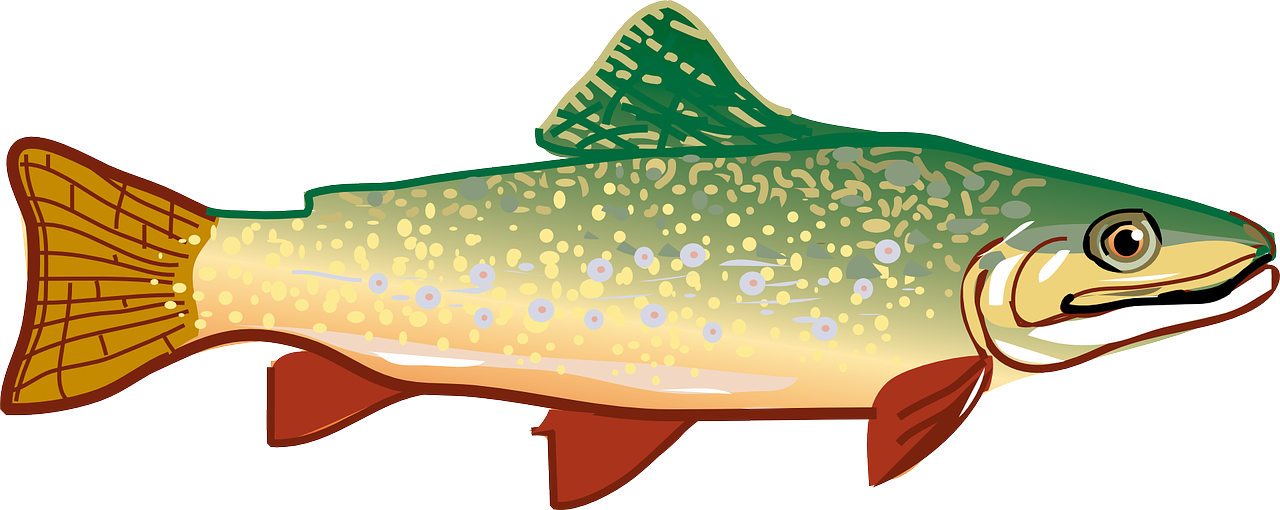 Trout clipart cool. Diet drugs and health