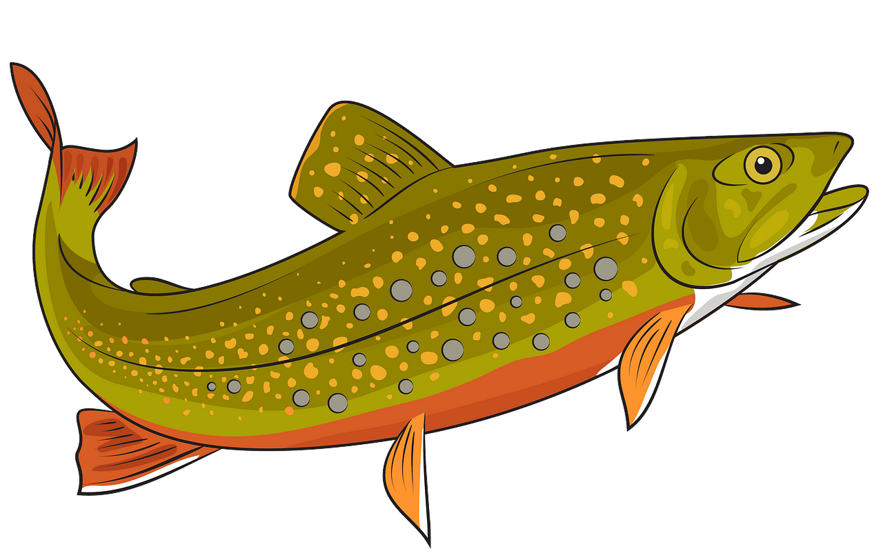 Brook free download creazilla. Trout clipart cool