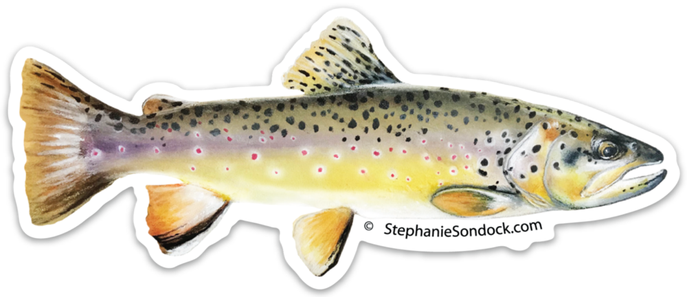 Trout clipart cutthroat trout. Products stephanie sondock brown