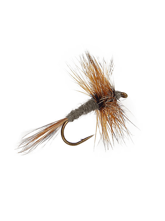 Trout clipart dry fly. Flies and premium product