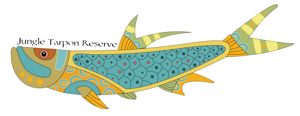 Jungle tarpon reserve costa. Trout clipart dry fly