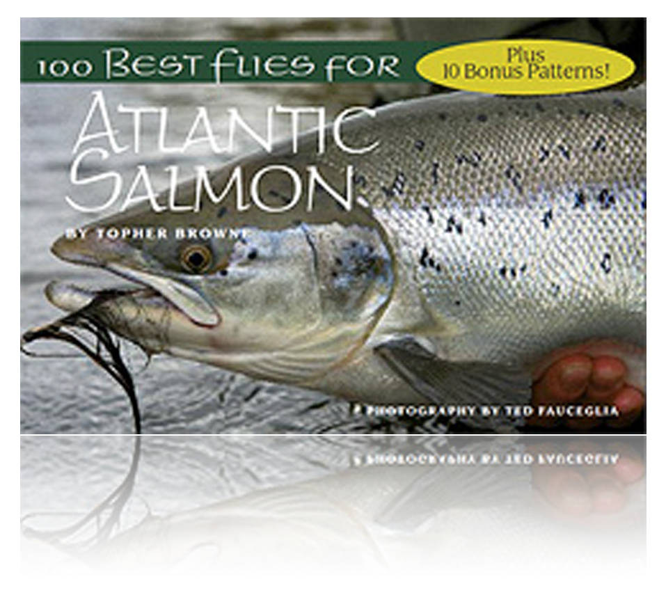 best flies for. Trout clipart dry fly