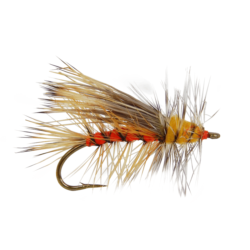 Trout clipart dry fly. Attractor stonefly pattern stimulator
