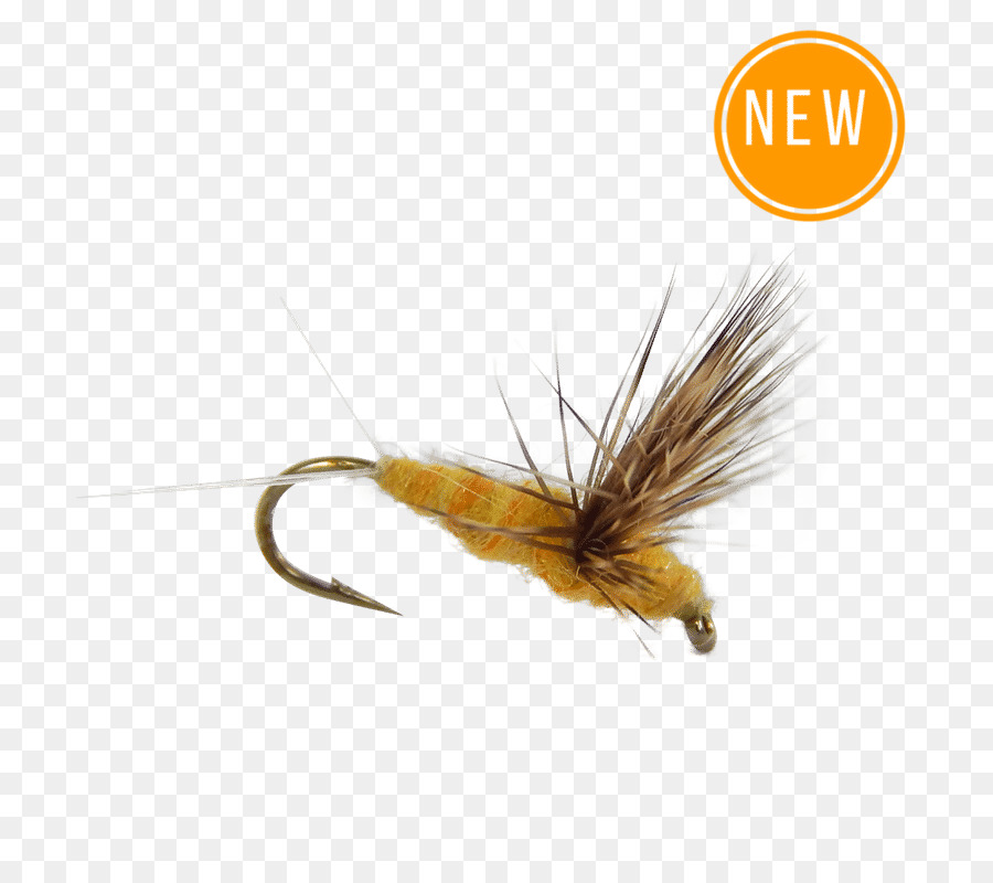 Fishing flies proven patterns. Trout clipart dry fly